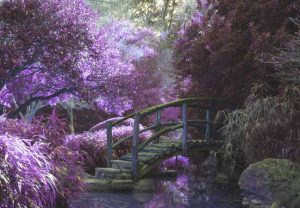 arched bridge in purple forest